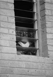 seth taras_kids-window