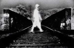 seth taras_tracks