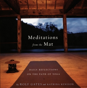 Seth Taras_Meditations_from_the_mat